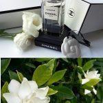 シャネルの7年に1度しか販売されない幻の香水ご存知ですか!